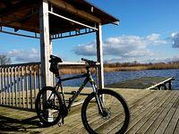 Jezioro Miedwie w Wierzbnie