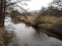 Rzeka Radunia okolice miejscowości Sławki