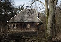 Opuszczona Leśniczówka Teofile