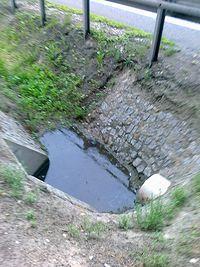 Woda w rowie