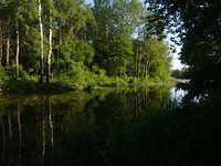 Jezioro Wilanowskie
