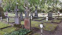 Cmentarz szpitalny Tworki