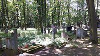 Klimatyczny cmentarz w lesie. Tworki