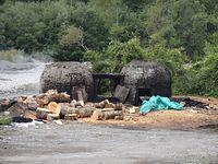 Produkcja węgla drzewnego