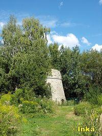 Wapiennik w Mokre koło Śląskiego Ogrodu Botanicznego