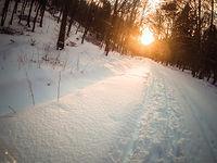 Śniegowa wycieczka po Trójmiejskim Parku