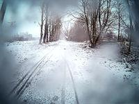 Śniezyca przy rezerwacie Beka