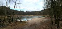 Nadal wysychające jezioro Goplana z lasu Arkońskiego