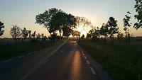 Powrót do domu - Szreniawa