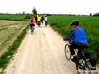 Rowerzyści na trasie