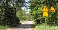 Brukowana droga Grzybno - Chłopowo
