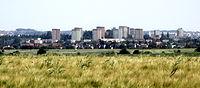 Łany zboża i panorama Szczecina z trasy Kurów - Przecław, urocze dwa kilometry