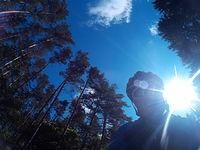 Paskudna gęba na te ładnego nieba :)