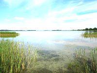 Jezioro Kaliszańskie - widok z Kamienicy
