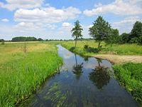 Rzeka Wełna płynąca przez wieś Cieśle