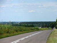 Widok na okolice Rogoźna z drogi Murowana Goślina - Rogoźno