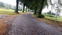 Stare, poniemieckie bruki jak na Paris - Roubaix
