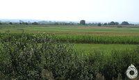 Pradolina Sanu i wzgórki Pogórza w tle