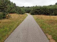 Ścieżka Trzebiniów - Ostrężnik