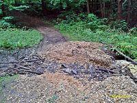 Miechowice_ścieżka rowerowa po burzy