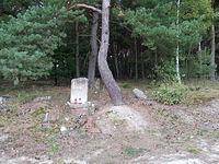Inowłódz - ruiny cmentarza Żydowskiego