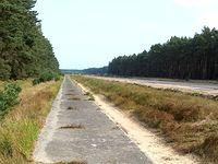Ścieżka wzdłuż DW 142