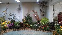 Wystawa ogród botaniczny