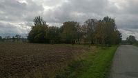 Lokalny jesienny widok