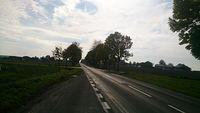 Droga na Bychawę