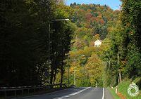 Jesień szymbarska