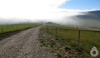 Zjazd w mgłę