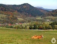 Spokój nad doliną