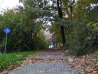 Schody z jesienią w tle