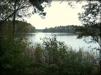 Jezioro Łąkie wieczorem
