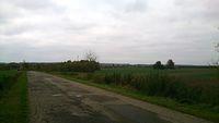Droga na Kiełczewice
