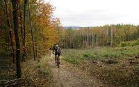 Piękna ta jesień w lesie i wśród pagórów