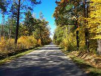 Jesienią nawet asfalty pięknieją II