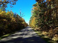 Jesienią nawet asfalty pięknieją III