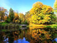 Jesień w Parku Staszica I