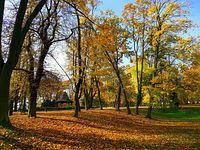 Jesień w Parku Staszica II