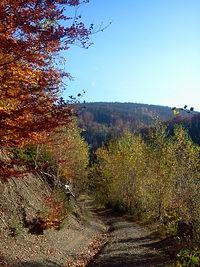 Złota czeska jesień