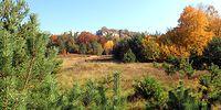 Góra Zborow w jesiennych kolorach