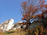 Kolorowo na skałkach