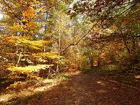 Jesień na czerwonym szlaku