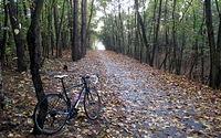 Jesień na rowerze jest piękna
