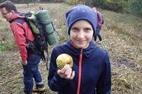 """Zdobyczne jabłko - wolne od chemicznych """"ulepszaczy"""";)"""