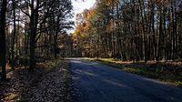 Droga za Poczerninem w kierunku Sowna