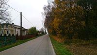 Droga w kierunku Jabłonnej