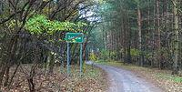 Tuż za osadą Żółtew - droga w kierunku Sławoszewa