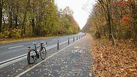 Jesień na gładkiej rowerówce w Strzeszynie. Z oczyszczaniem jej z liści jak zwykle słabo